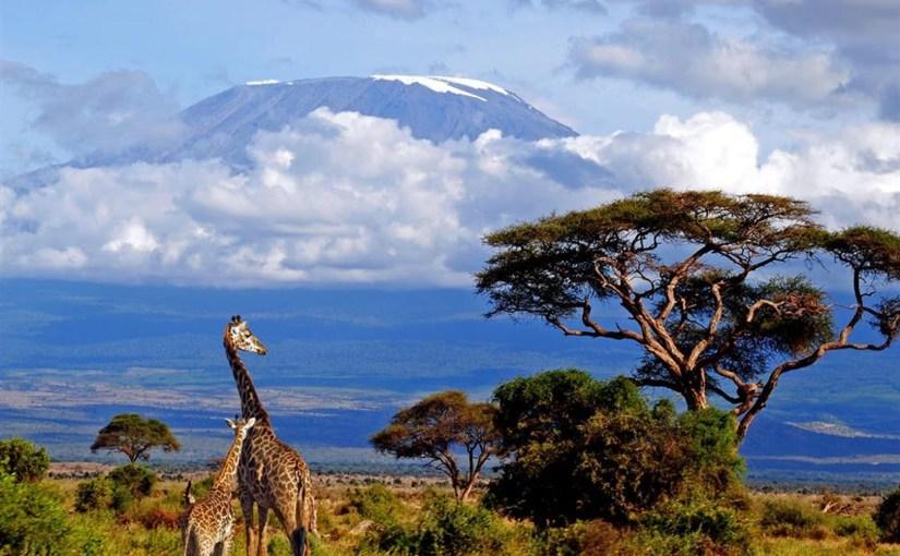 Tanzanie – Kilimanjaro – Lespréparatifs
