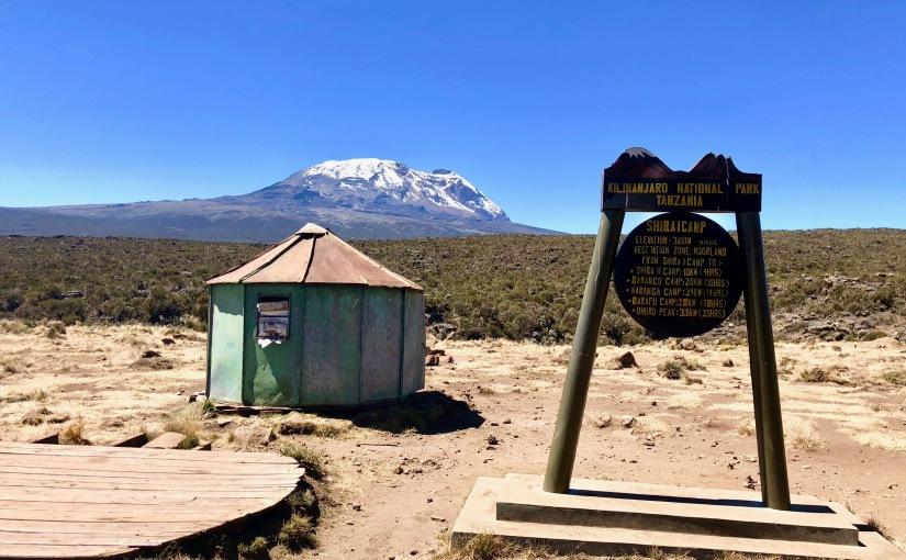 TANZANIE – Kilimandjaro- J3 Forest Camp – Shira camp – D+859m