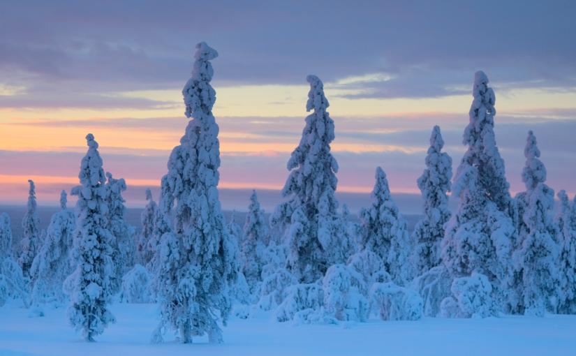 Laponie – Saariselkä